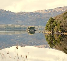 Calm Lake Muckross Killarney by amuigh-anseo