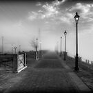 Into the Mystic - B&W by steini