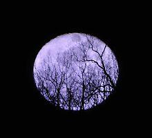Tantric Talisman by LavenderMoon