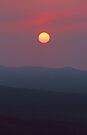 THE SUN by Chuck Wickham