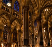 st patricks cathedral by jose hernandez