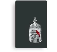 cage? Canvas Print