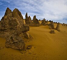 pinnacles desert 1, western australia by col hellmuth