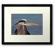 Is this my good side ? Framed Print