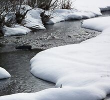 Winter on the North Fork by © Betty E Duncan ~ Blue Mountain Blessings Photography
