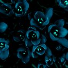 Glow in the night flowers by Penny V-P
