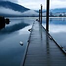 Harrison River Dock by Tracy Riddell