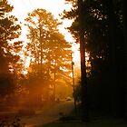 Sometimes Sunrise by Jay72