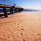 Windswept Tracks by Kazzii