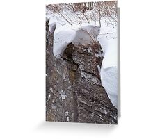 Blanketed in Snow Greeting Card