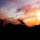 Smoke-stack Sunset by lidarcy