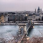 The Chain Bridge &amp; Basilica - Budapest by NeilAlderney