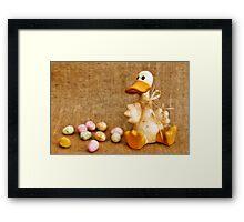 Mama Duck  Framed Print