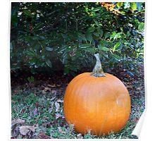 Pumpkin Time 6 Poster