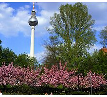 The Fernsehturm by kelliejane