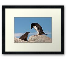 """Adelie Penguin and Chick ~ """"Well......if you say so dad"""" Framed Print"""