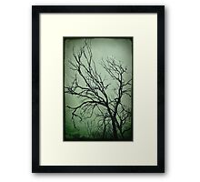 Burntout Framed Print