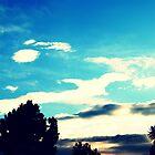 Thy Sky. by Ronda Basteyns