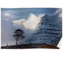 Caledonian Pine, Glen Torridon,West Highlands of Scotland. Poster