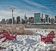 Gantry Plaza State Park  by Arianys Wilson