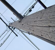 Power Line: A Surge by Raechel deMink