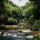 near the bottom of Y/S falls Jamaica by jeanlphotos