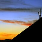 An Arizona Sunset by CarolM