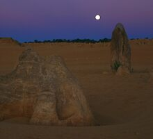 Pinnacles Desert Moon by Daniel Fitzgerald