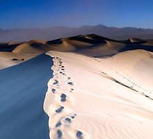 Stovepipe Wells Dunes at Dawn by Zane Paxton