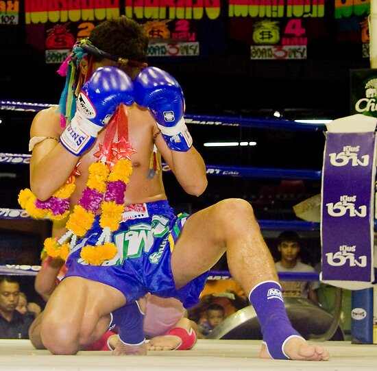 thai boxer by Loic Dromard
