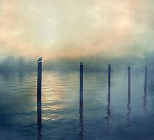 One Foggy Afternoon by SharonAHenson