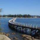 Victor Harbor view from Granite Island, South Australia by BronReid