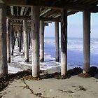 Cayucos Pier by Renee D. Miranda
