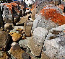 Rocks, Bay of Fires by morealtitude