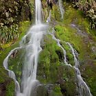 Mossy Waterfall by Kimball Chen