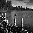 Lakeside Monochrome - Willen, Milton Keynes by Nick Bland