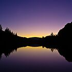 Silence is Golden by Craig Usher