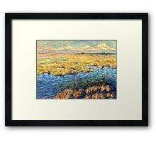 Marshland in early spring Framed Print
