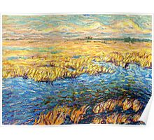 Marshland in early spring Poster