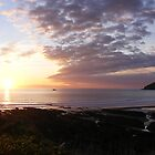 sunset on the headland by harryland93