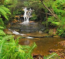 Leura Cascade by Terry Everson