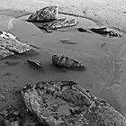 Rock pool by wildone