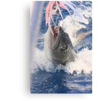 Jaws-Baraccuda Style Canvas Print