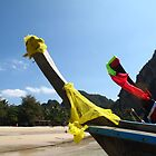 Longtail Flags by Pippa Carvell