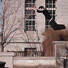Leap Of Faith by Mark David Barrington