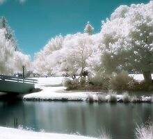 Minawarra Park, Armadale (Infrared) by astrant82