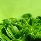 S for Salad by TriciaDanby