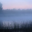 Foggy U.P. Michigan Dawn by Bill Spengler
