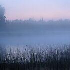 Foggy U.P. Michigan Dawn by Bill Spengler