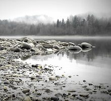 Fraser River by Annie Lemay  Photography